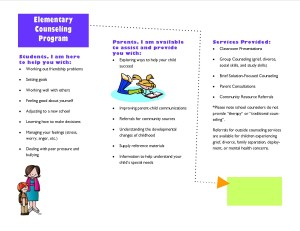 Editable Counseling Brochure2